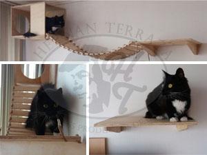 Increible casa para gatos